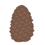 Pinecone by Hellusination