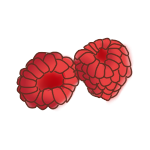 Raspberries by Hellusination