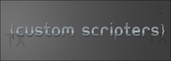 Custom Scripters