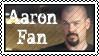 Aaron fan by Coley-sXe