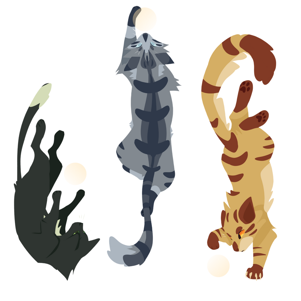 Human Warrior Cats Remember Me