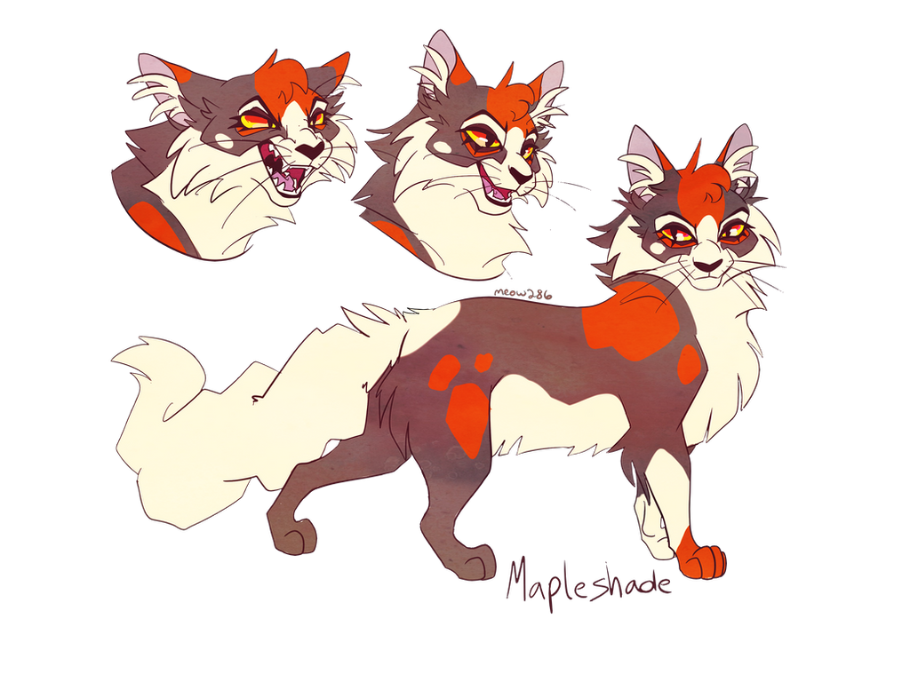 Warrior Cats Gay