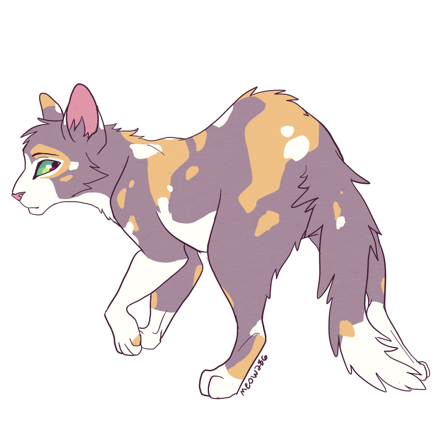 tawnypelt by meow286 on DeviantArt Warrior Cat Drawings