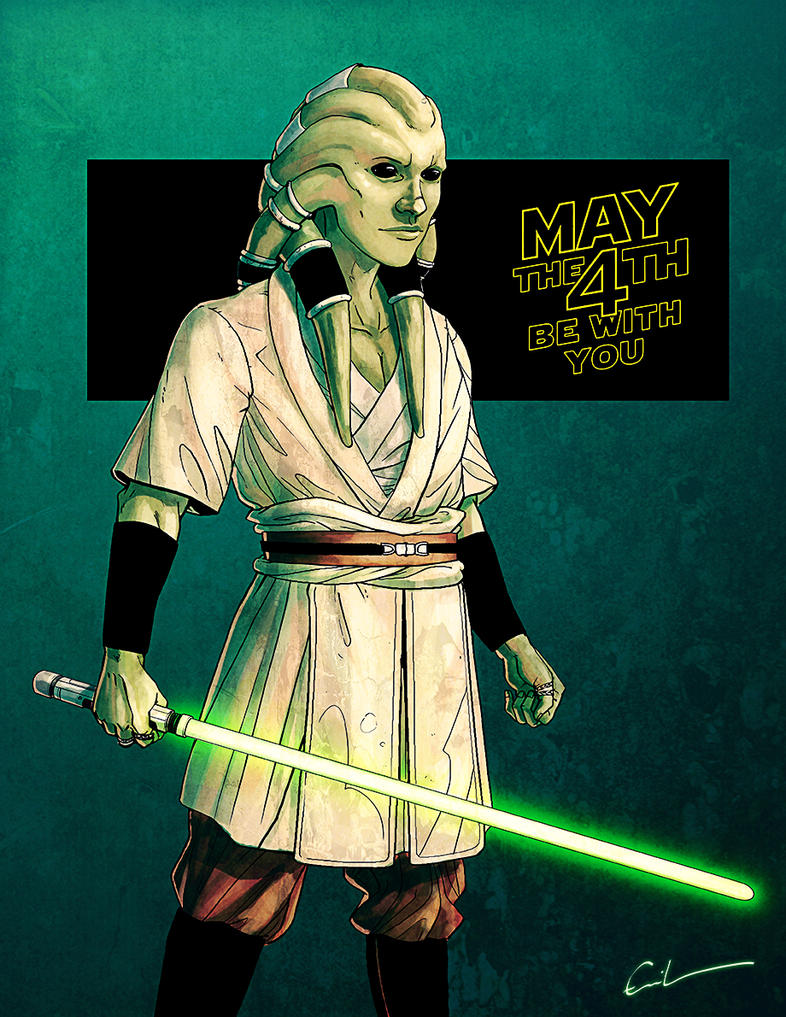 May the 4th be with you - 2015 by Syrphin