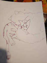 Inktober 02 Cuddle Cats