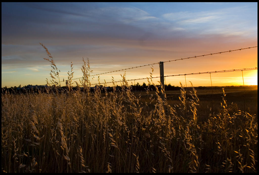 sunsets_in_dubbo_001