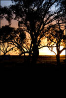 sunsets_in_dubbo_004 by kymw