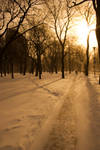A_cold_sunny_Day001