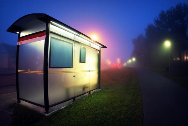 Busskur by Lemonwedge