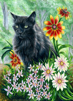 Fluff and Flowers