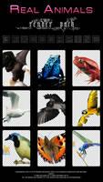 Reshare-Animals_Render_Pack
