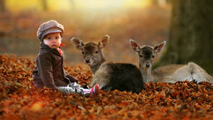 Baby And Small Deer