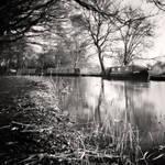 River Wey II by Jez92