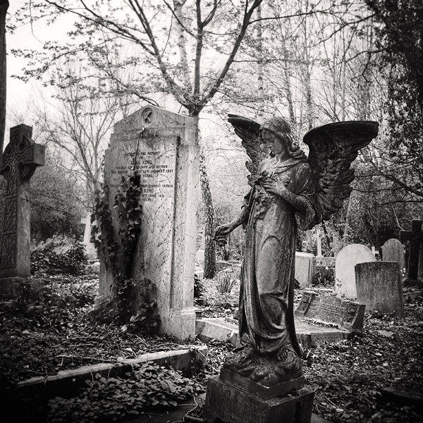 highgate chatrooms Incestuous marriages were also seen in the royal internet chatrooms and topical websites exist that provide 2009 and is set in london's highgate cemetery.
