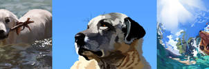 Doggo Studies (Day 13, 14, 15)