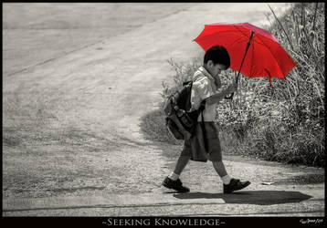 Seeking Knowledge by jdeepan