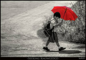 Seeking Knowledge