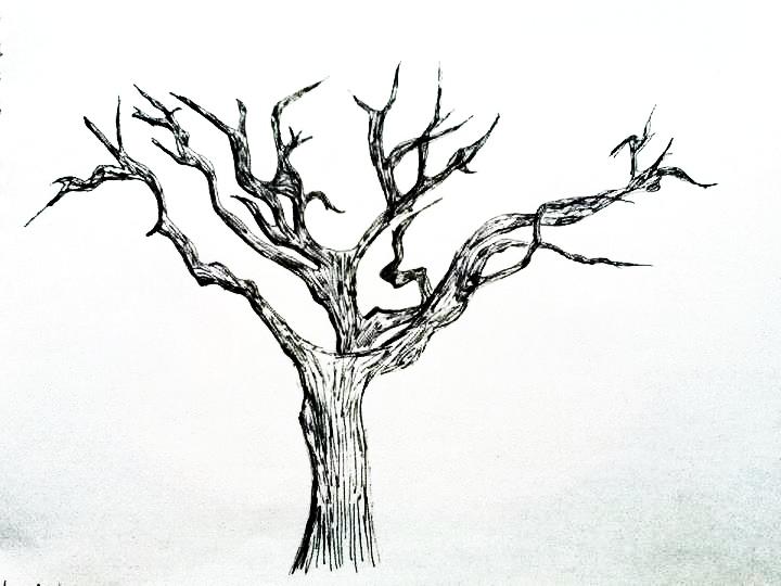 dead tree done with pen :) by Mockingjayde21 on DeviantArt