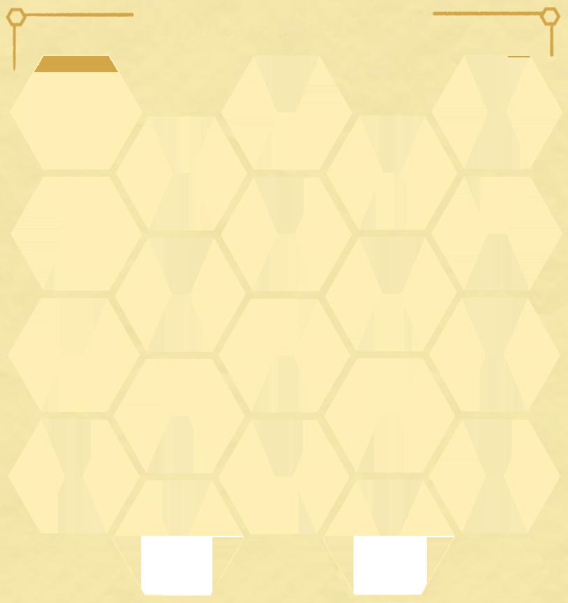 Honeycomb Storage