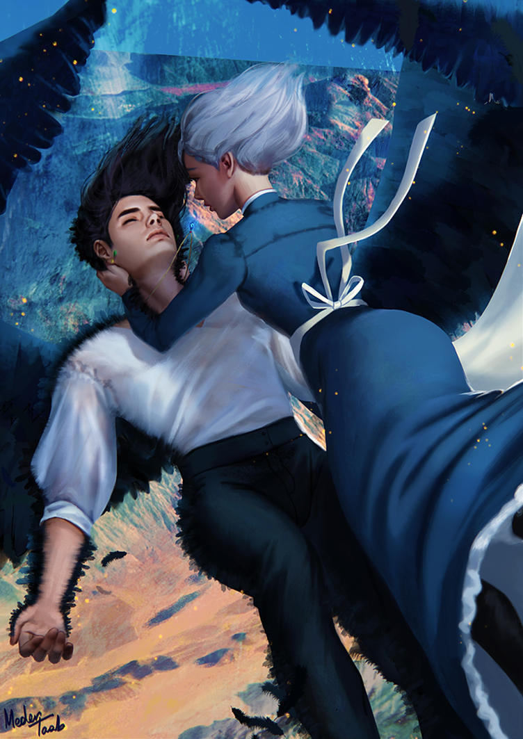 Howl and Sophie by MeTaa on DeviantArt