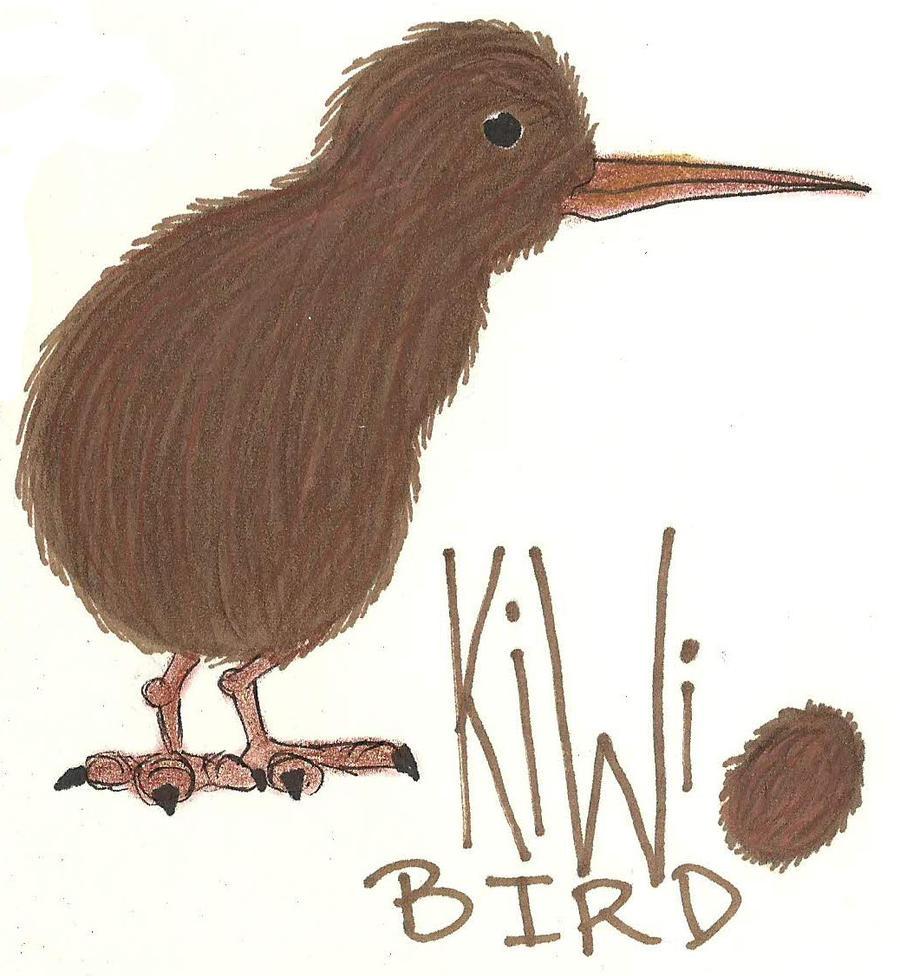 how to draw a kiwi bird easy