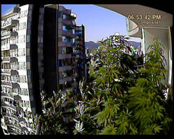 Balcony Camera Anim PNG by transmitdistort