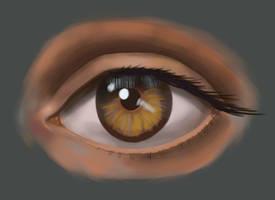 Human Eye (again) by AverageEarthFolk