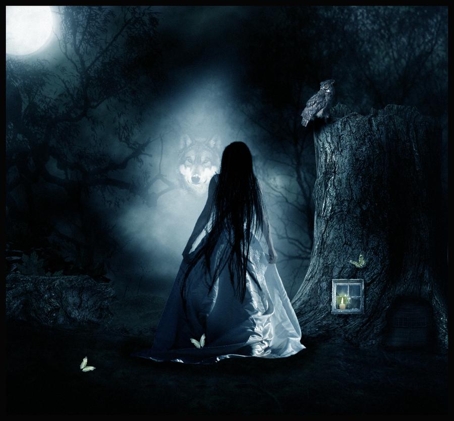 Dark forest by vladko3007 on DeviantArt