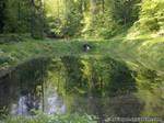 Lake by RybiOgon
