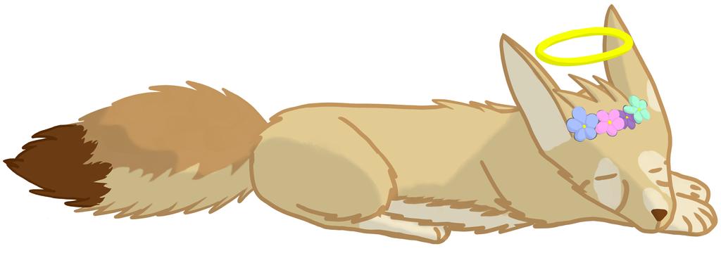 Fennec Fox Doodle by spndl
