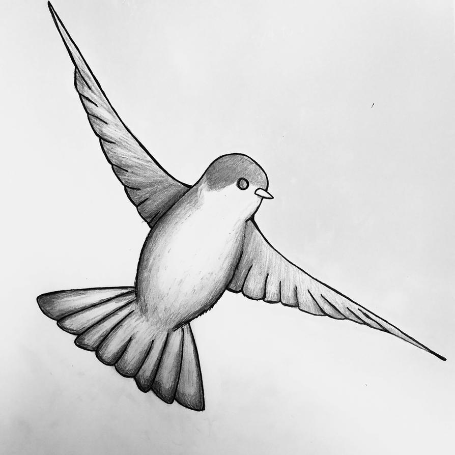 Quick bird sketch by Sheepguin