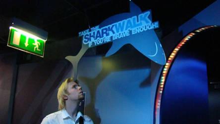 Sharkwalk by Sora-Kun-AR