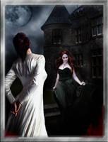 The Wedding Night by David-Zahir