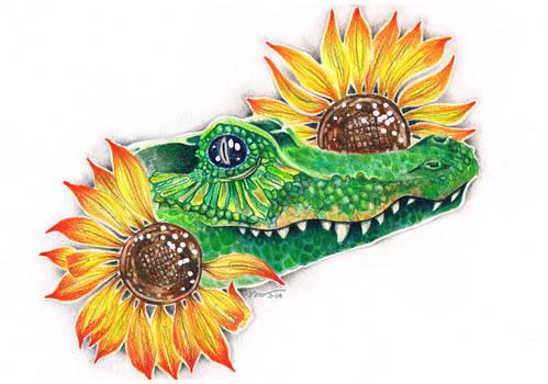 Crocodile in the sunflowers