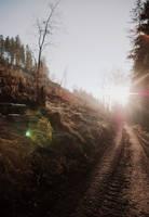 light by MalfoyFanatic