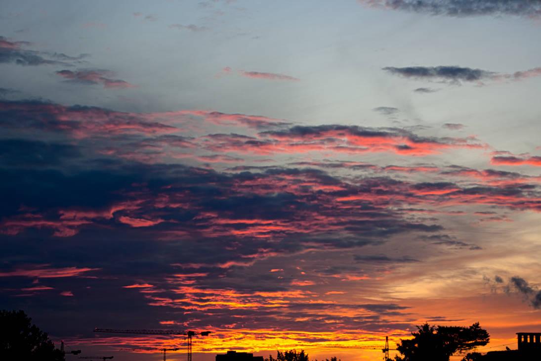 Purple golden hour