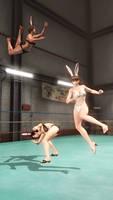 DOATEC Divas Hitomi x Kokoro vs Lisa ~