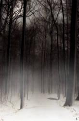 through the mist by jonight