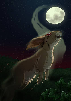 Watership Down - White Blindness
