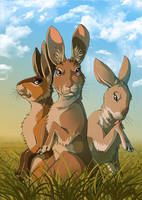 Watership Down - Hazel and friends by LadyFiszi