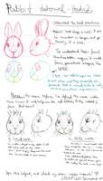 Rabbit drawing tutorial pt2 - Understand the Head by LadyFiszi