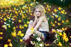 Daffodils by AnitaSadowska