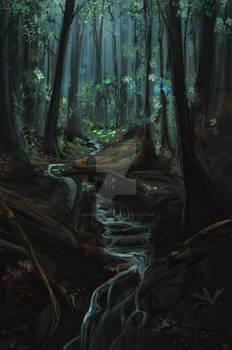Photostudy misty forest