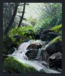 Study waterfall in the forest