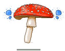 Mushroom by Piirustus