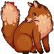 Fox by Piirustus