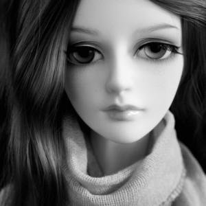 AlasseCarnesir's Profile Picture