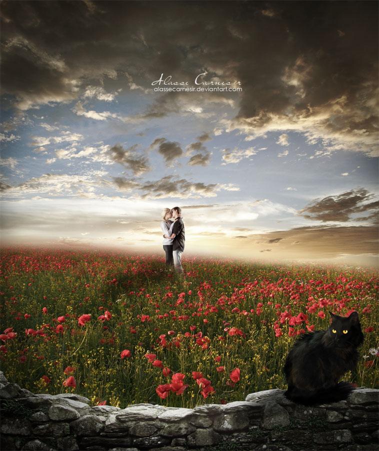 Love is Red by AlasseCarnesir