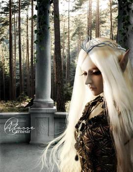 The Unseelie Queen