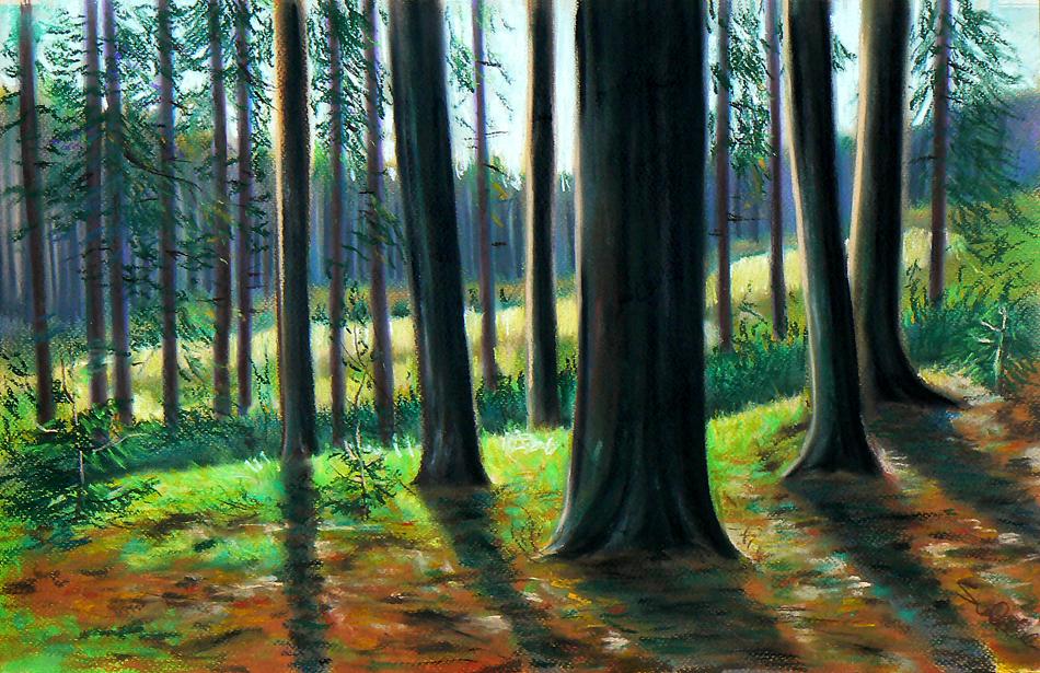 Woods by casspike